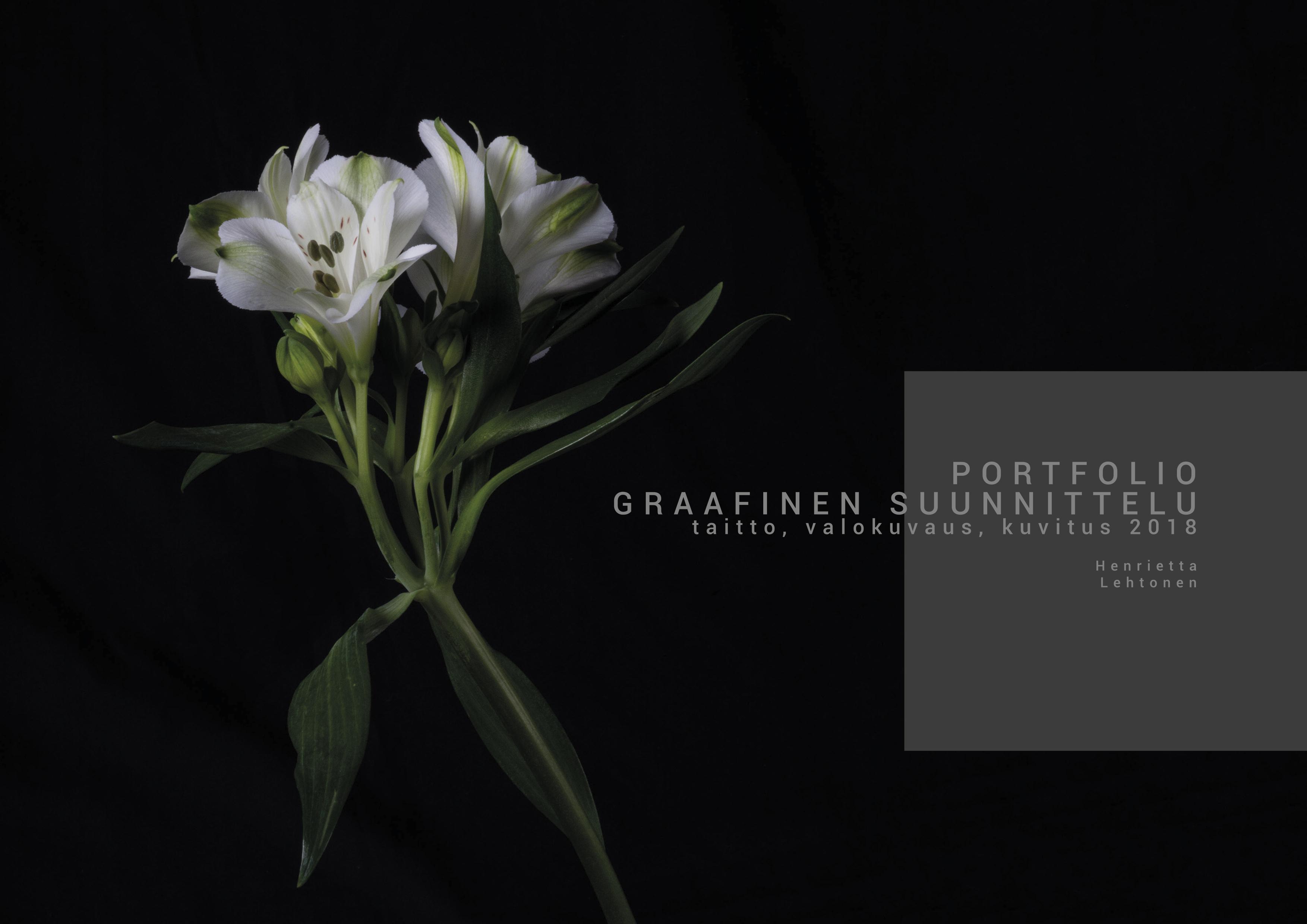 Henrietta-Lehtonen-Portfolio